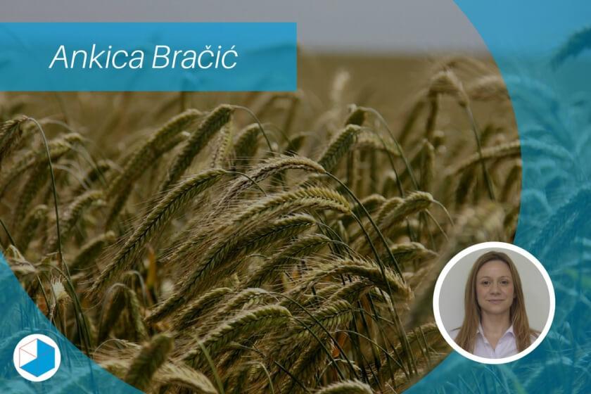 poljoprivredno gospodarstvo - bracic - plavi ured