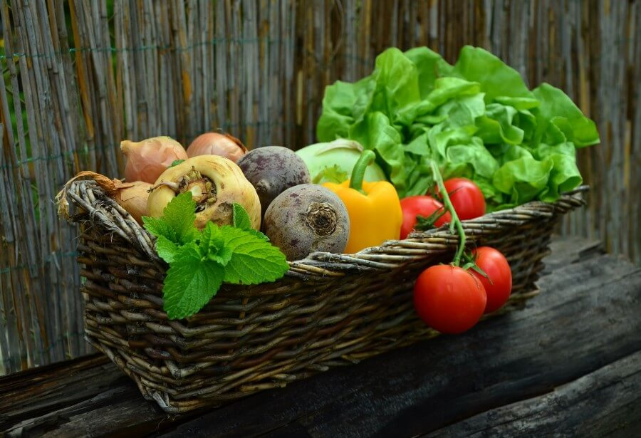 poljoprivredno gospodarstvo plavi ured