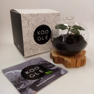 koogle earth projekt O2